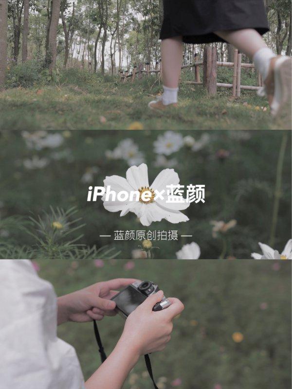 iPhone手机调色 | 莫兰迪绿·日系高级电影感
