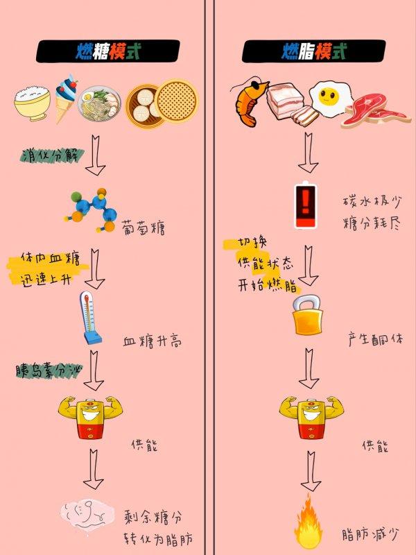 生酮饮食减脂防弹咖啡附生酮食谱