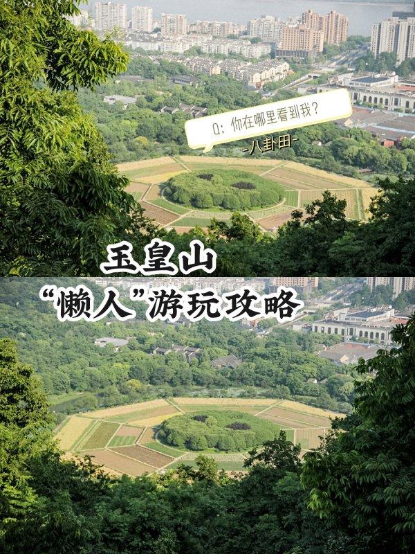 杭州网红八卦田不爬山玉皇山懒人游