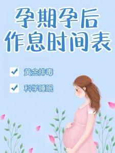孕期孕后作息时间表孕期日记