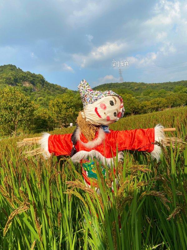 杭州八卦田里面の英雄和美女们