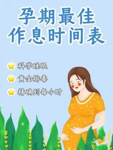 孕期最佳作息时间表   科学睡眠 黄金排毒