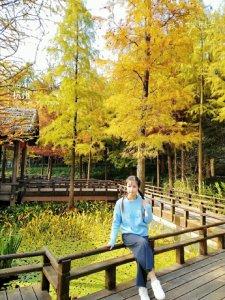 秋日物语八卦田也有美丽的颜色