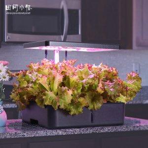 好物推荐引导健康生活的家用蔬菜种植机