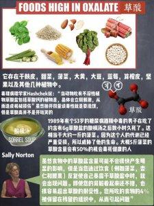 纯肉是饮食【四】草酸和其他次级代谢物
