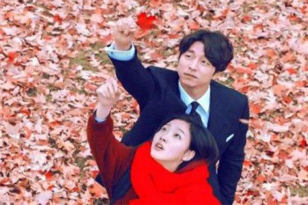 公认零差评的4部韩剧 你都追过吗?网友:百看不厌