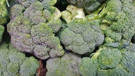 以下3种食物能够为身体排毒 提升解毒功能 早知早受益