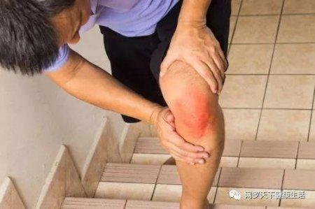狗尾巴草外敷 不出两周 膝盖痛不见了 滑膜炎也说拜拜了