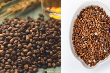 大麦茶的作用 减脂瘦身小妙招