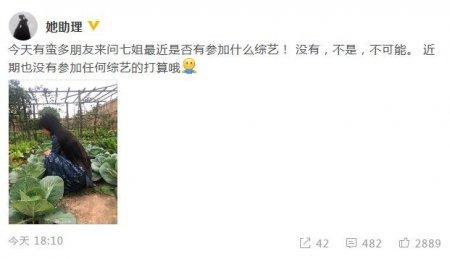李子柒否认加盟综艺 没有参加任何综艺节目的打算