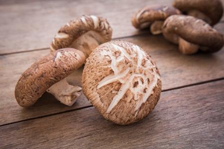 香菇的好处和功效