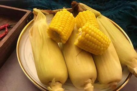 煮玉米需要多长时间