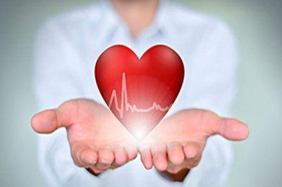 五脏六腑如何护理?分享五脏六腑养护攻略助身体更加健康!