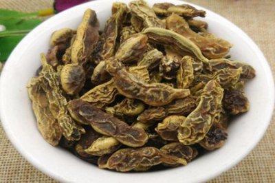 槐角茶的功效与作用 五个女人槐角泡水喝的功效
