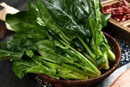 菠菜的营养价值和功效