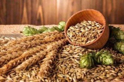 麦芽硒的功效与作用 四个女人吃麦芽硒营养价值