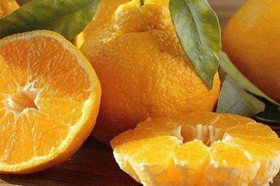丑橘的功效与作用 四个女人吃丑橘的营养价值