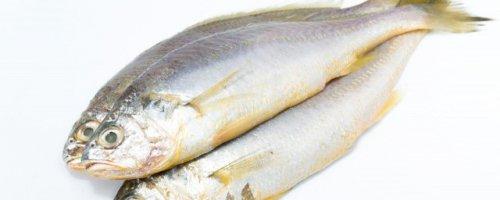 黄花鱼清蒸的做法