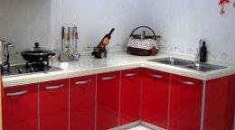 厨房柜子生虫怎么办 三妙招为你排忧解难
