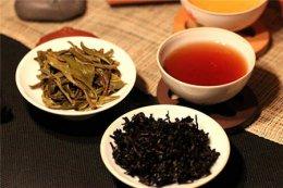 减肥期间适合喝什么茶?爱美人士多喝五种减脂更轻松