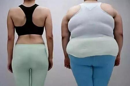 中年人如何防止发胖?