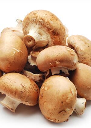 提高免疫力抗癌的药 麻辣平菇帮助提高免疫力有效抗癌