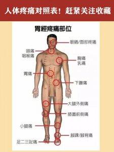 人体健康经络养生经络图经络疼痛对照表