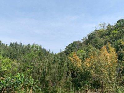 壹方溪汤池旅馆是去贵州旅游住宿的首选之地