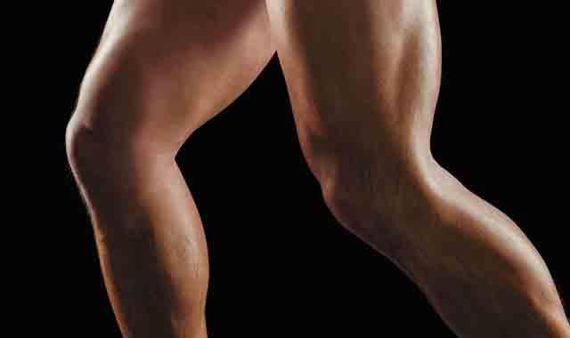 大腿肌肉名称介绍 教大家如何有效练出健硕双腿
