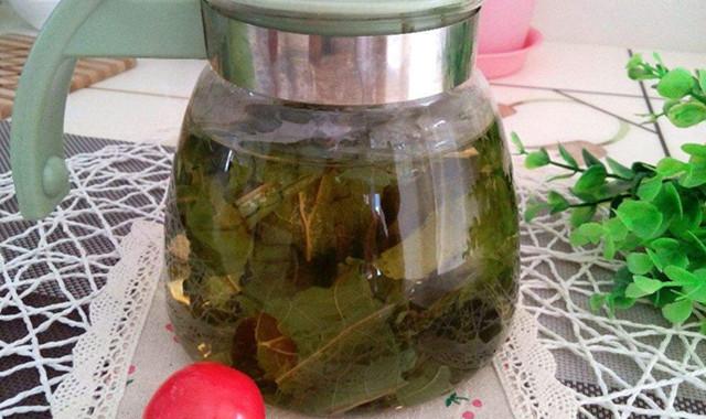 荷叶茶的功效与禁忌 教大家正确的饮用方法