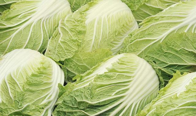 吃三天白菜能减肥吗 只能取得暂时的效果