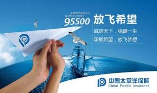 如何在线查询中国太平洋保险的个人寿险保单 方法如下