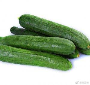 黄瓜面膜能够天天敷吗 黄瓜的功效和食用禁忌