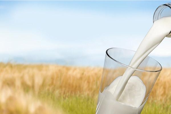 纯牛奶和奶粉哪个更好 喝奶粉和纯牛奶哪个好?