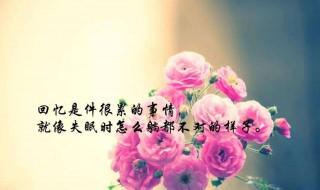 生活感悟的句子 感悟生活的句子