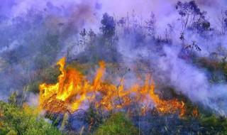 孕妇梦见火是什么意思 梦见火的孕妇注意了