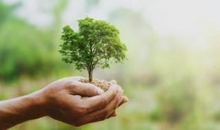 环保小常识有哪些 节能环保小常识