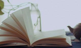 520最具创意的表白情书 520写给女朋友的情话