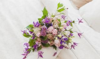 花怎么保留 鲜花的的保留技巧