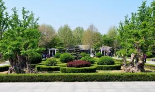 潍坊植物园在什么地方 潍坊植物园多大