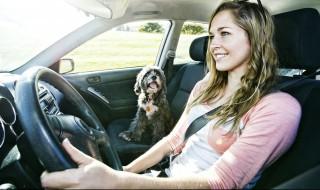 汽车近光灯标记是什么 汽车近光灯标记简单介绍